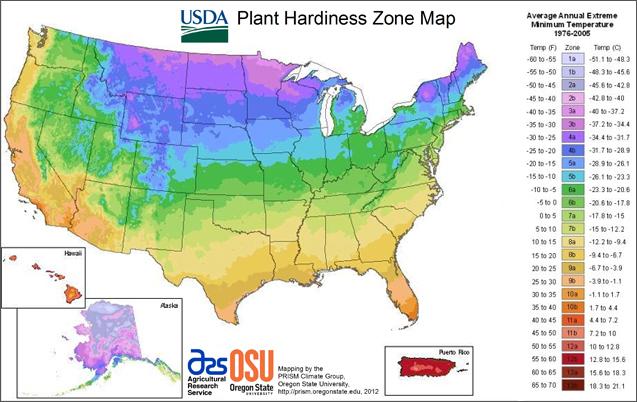USDA-Plant-Hardiness-Zone-Map