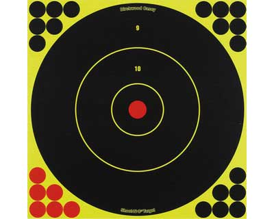 "Birchwood Casey Birchwood Casey34080 ShootNC 12"" Bulls Eye Target/500"