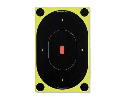 "Birchwood Casey Birchwood Casey34905 B27-6 SNC 9"" Oval Target (Per6)"