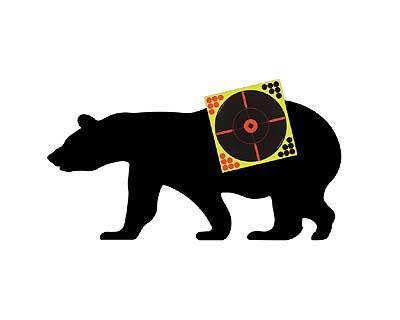 Birchwood Casey Birchwood Casey38778 SB-1 SharpShoot Bear Kit